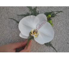 Cocarda cu orhidee alba CC11